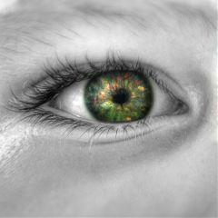 intheforest fantasy edit eye surreal