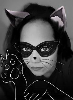 freetoedit meow simple cat edit
