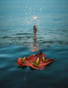 sea autumnleaves butterfly hand firework freetoedit