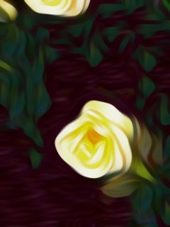 freetoedit effects artistic oilpainting roses
