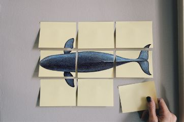 freetoedit whale hand paper