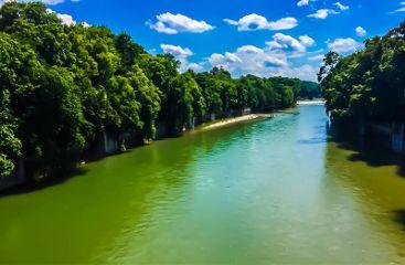 nature beautiful green trees sky freetoedit