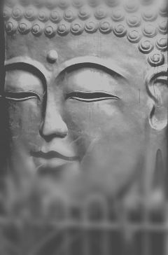 freetoedit buddha myphotography black