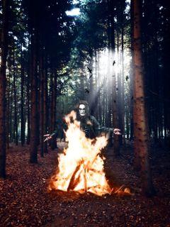 freetoedit woods trees creepy crow