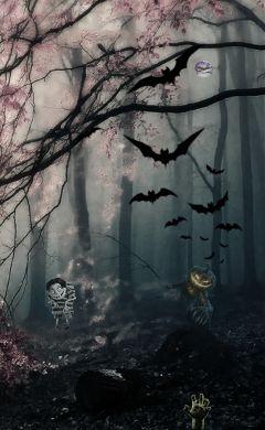 freetoedit halloween spooky bats