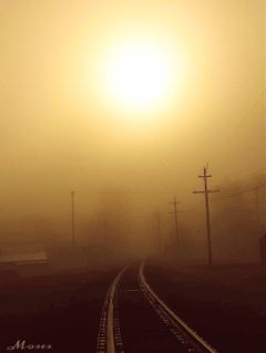 freetoedit mypic fog