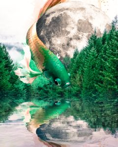 myremix surreal remixedwithpicsart