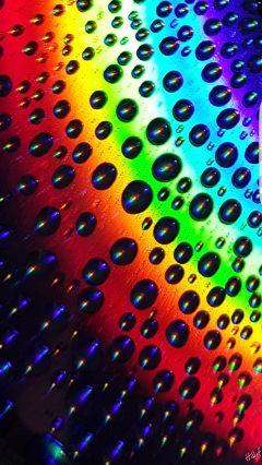 colorsplash photography