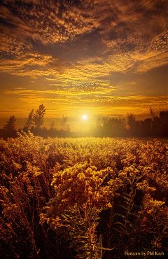 freetoedit remixit landscape travel sunrise