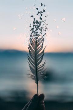 freetoedit feather