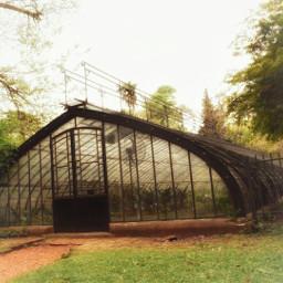 freetoedit vivarium garden ilumination perspective