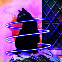 freetoedit cat dailyremixit mamiedit blackcatremix