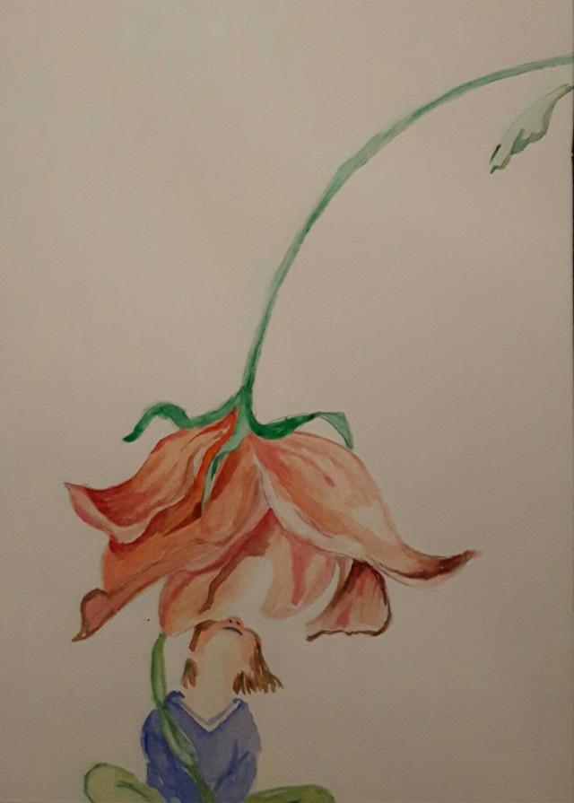 #photography #flower#pencilart #simple#beautifull#interesting