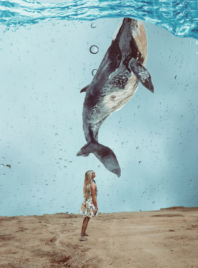 #remix #myedit #surrealism #surreal #whale