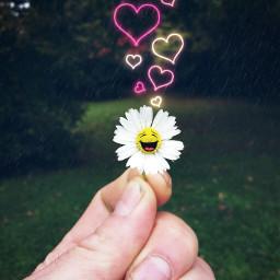 daisy rainyday texturemask stickers happiness
