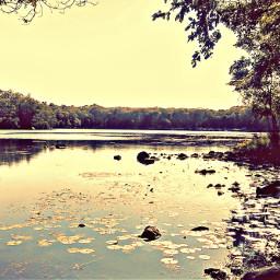 freetoedit. views nature freetoedit