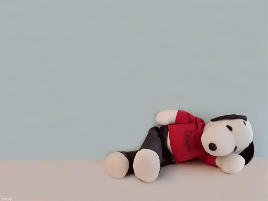 #snoopy #cute #emotions #photography #teddy