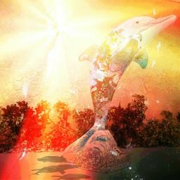 freetoedit dolphin dolphinarium art sunset