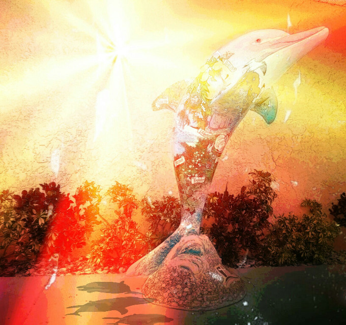 #dolphin #dolphinarium #art #sunset