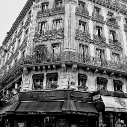 freetoedit paris googlephotos googleplusphotographers beautifulpictures