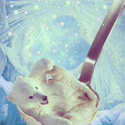 freetoedit polarbear coldoutside winterfun soupremix