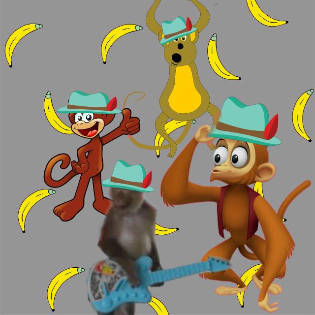 #monkeys #hatstickerremix #simplebackgrounds  #lol #cute #hat