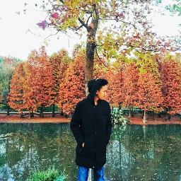 autumn autumn2017 autumncollage