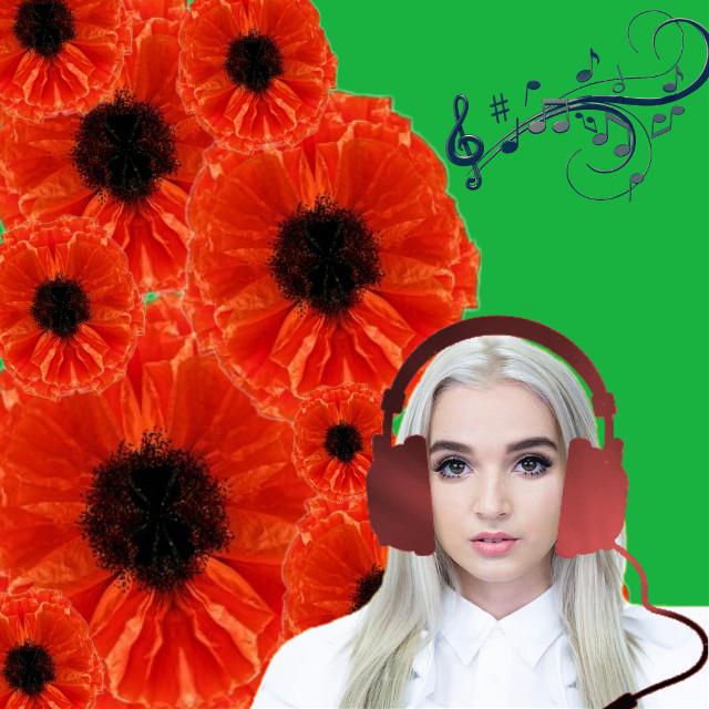 #poppy