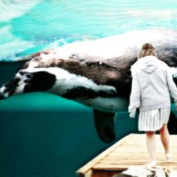 freetoedit dailyremix antarcticaremix