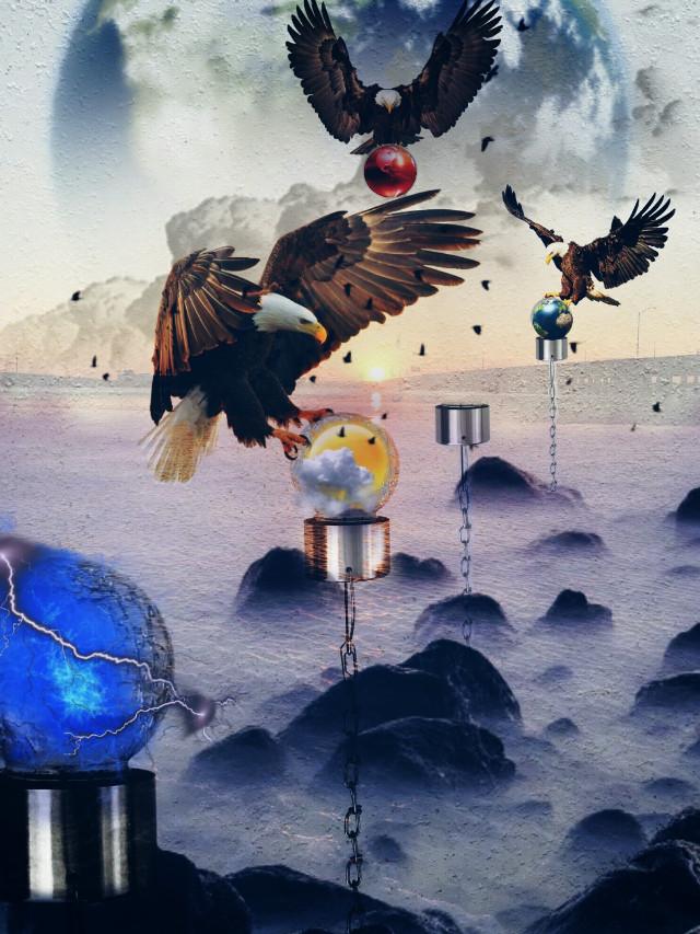 #eagle #surreal