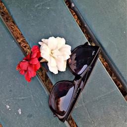 hdreffect pa glasses rayben white freetoedit