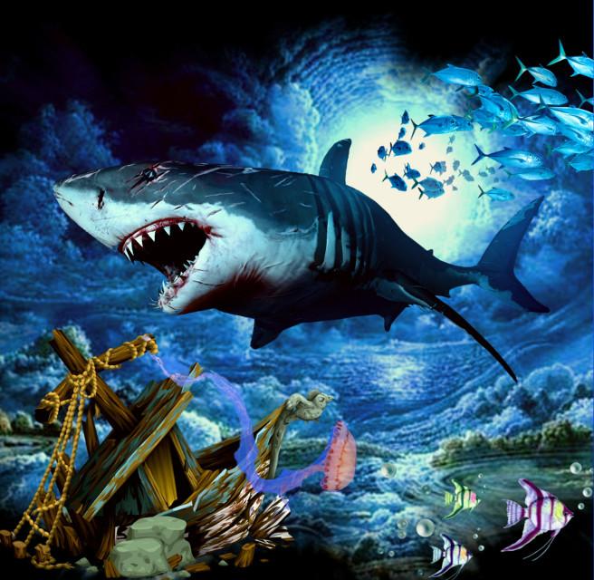 #dailyremixmechallenge #dailyremix  #ocean #jellyfish #sealife