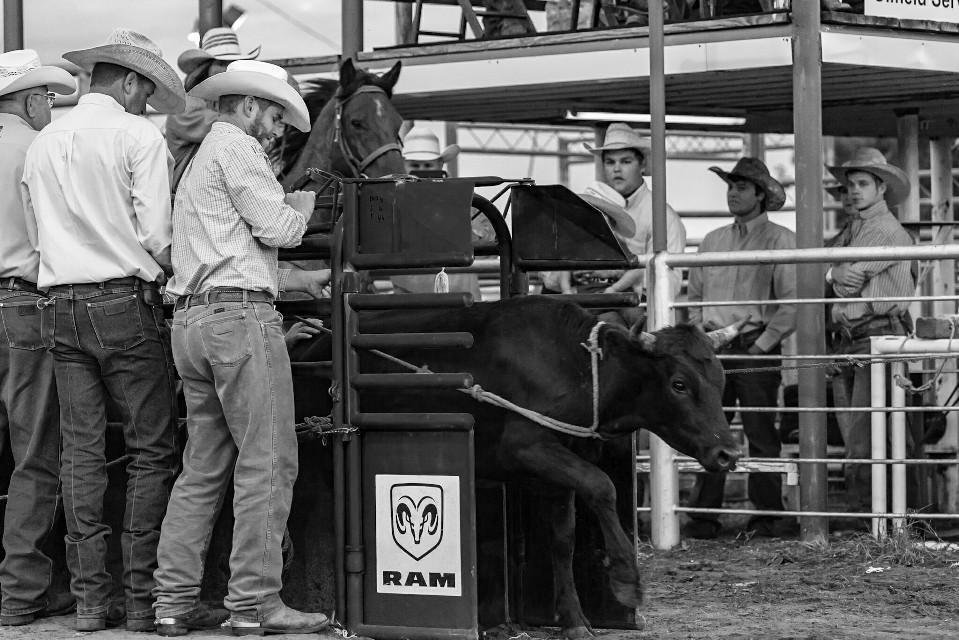 #oneofthebrave #oklahoma #rodeo