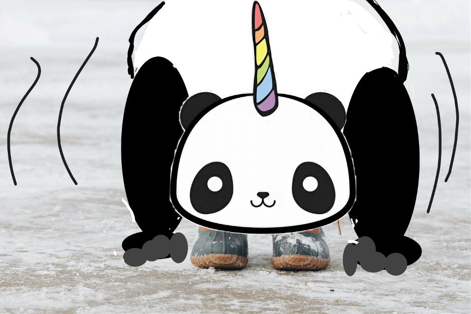 Yeah I work out :) #panda #toetouches #winterbootsremix #pandafacestickerremix