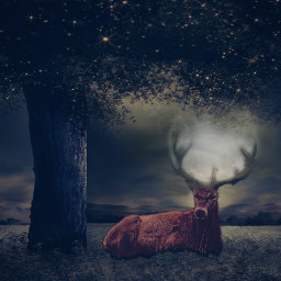 freetoedit reindeer night moon