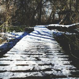 photography nature bridge wood winterwonderland