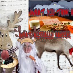 freetoedit reindeer santa carrot mincepie