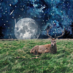 freetoedit moon bluesky night reindeer