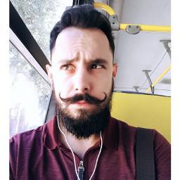 beardking bearbrazil bigode beards barba freetoedit