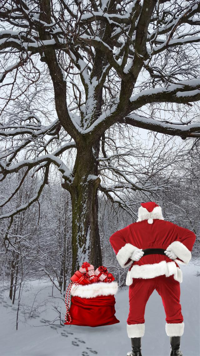 #santa #santaclaus #christmas #sack #heavy #backache #inthewoods #snow #trees #nature #december #winter