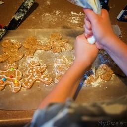 freetoedit ninja gingerbreadcookies holidaysweets