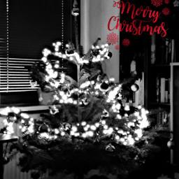 christmastree bnw_captures bnw_edit weihnachtsstimmung weihnachtszeit freetoedit