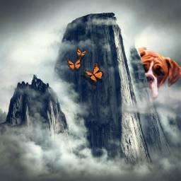 etheral surreal dream boxer dog landscape clouds
