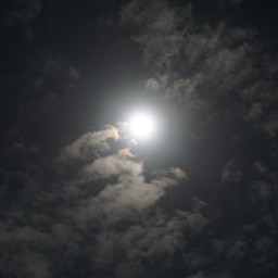 nightphotography nature fullmoonnight