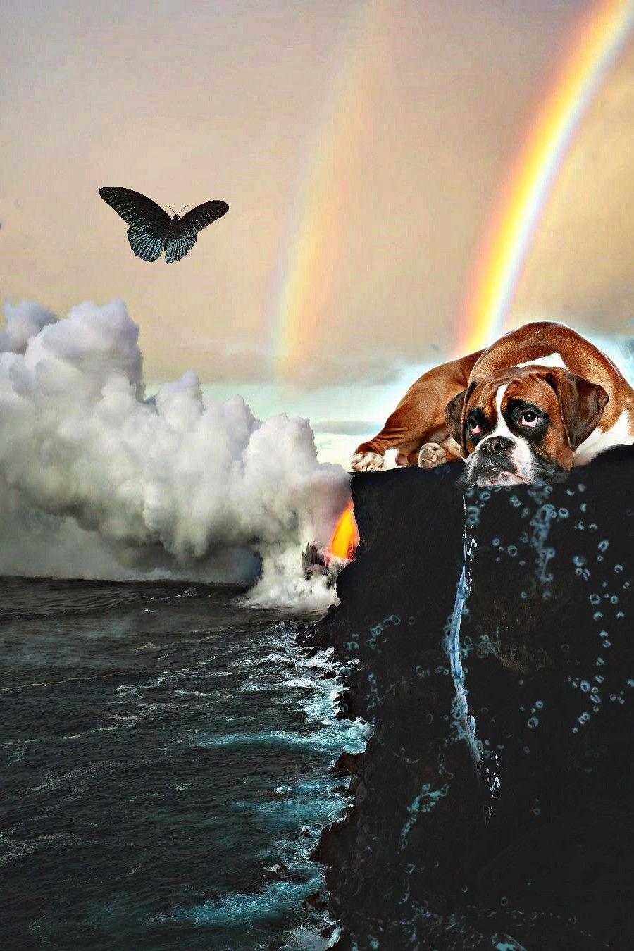 #daydream #imagination #dogs#butterfly #landscape#mixedmediaart