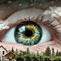 freetoedit foresteye green eye macro