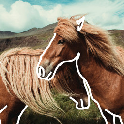 horses like4like cool vintage efects freetoedit