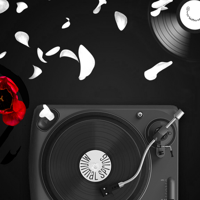 #music #tulip #blackandwhite  #myinspiration #spring #turnthetables