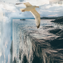 freetoedit foldinglandscape edgeoftheworld ocean sea
