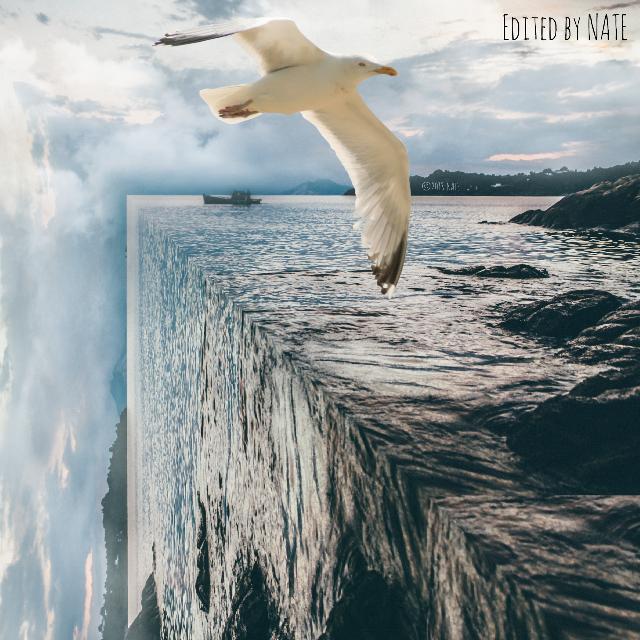 #foldinglandscape #edgeoftheworld #ocean #sea (OP by Nick Karvounis on Unsplash, Bird from MrCutout) *not free to edit*
